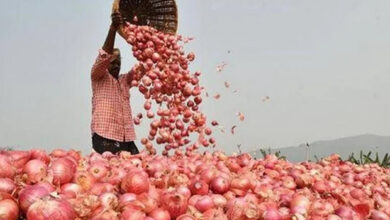 Photo of Onions Over 100 Per Kg in Hubballi-Dharwad: Here's Why