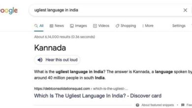 Photo of Ugliest Language In India: Kannadigas Angry At Google Search Result