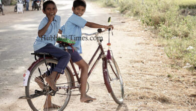 Photo of Schools To Reopen From August 23: Govt Releases Sop